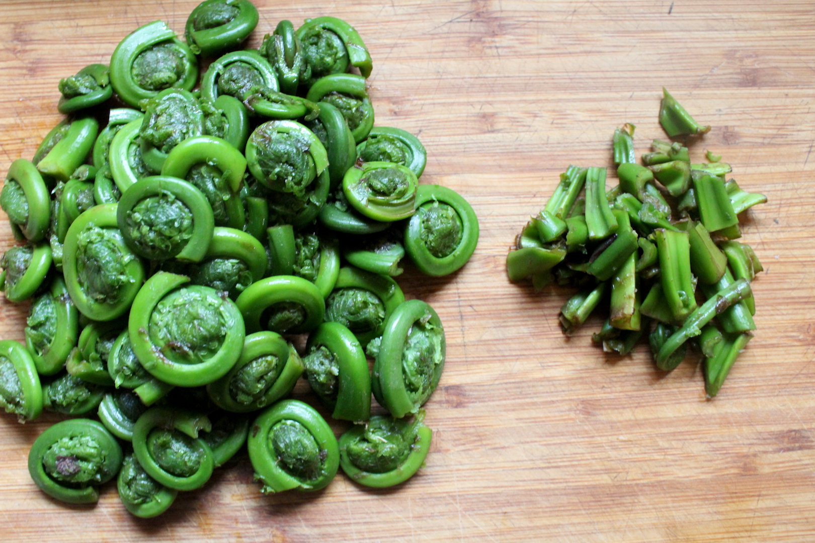 Trimming Fiddleheads