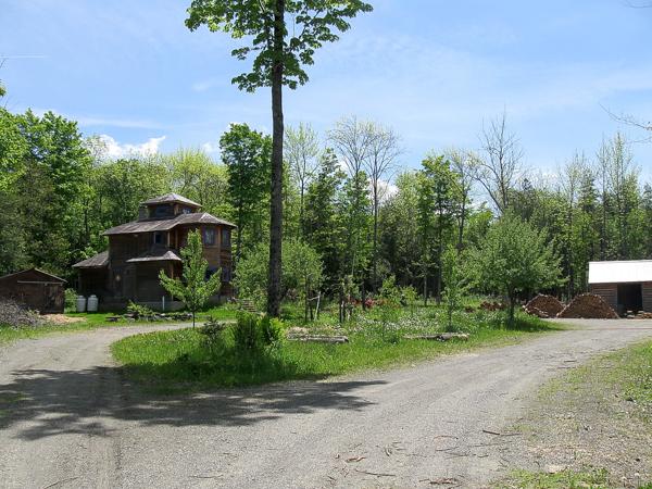 homestead permaculture garden