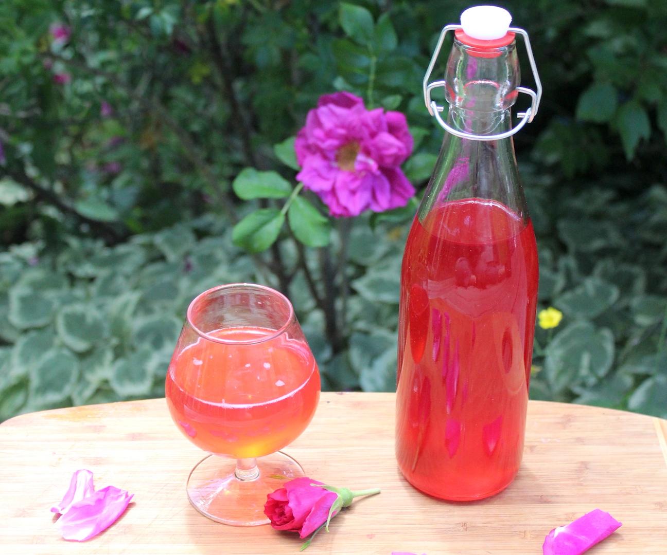 Homemade Rose Cordial