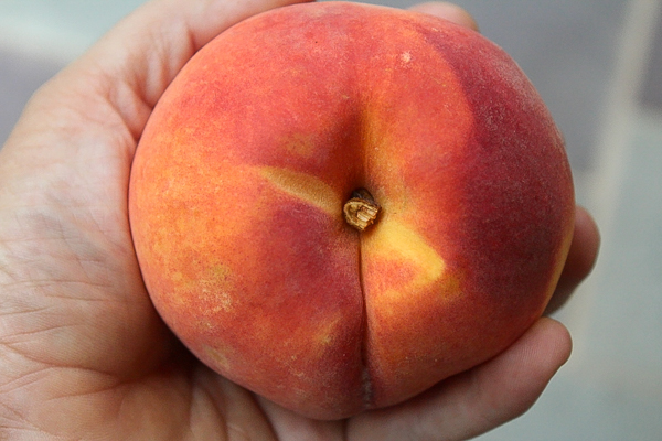 Ripe peach for canning