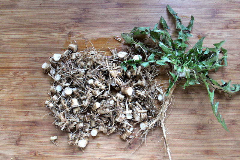 Dandelion Roots for Bitters