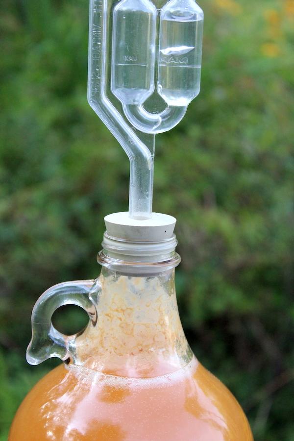 Bubbling Airlock making hard cider