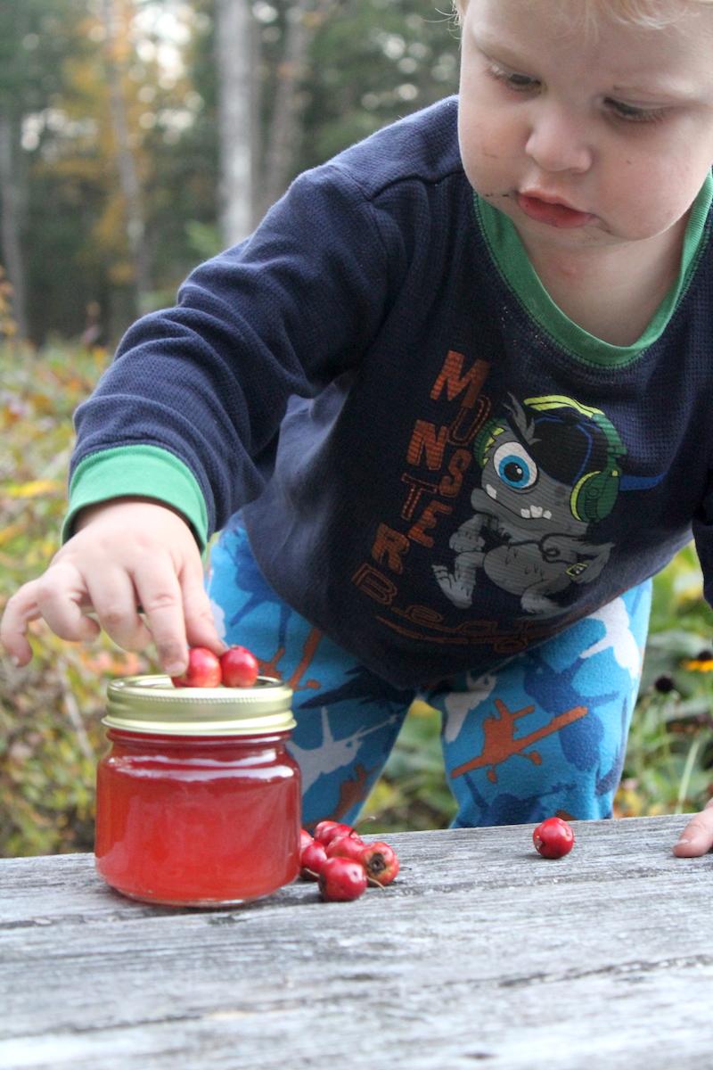 Hawthorn Baby Photo Bomb