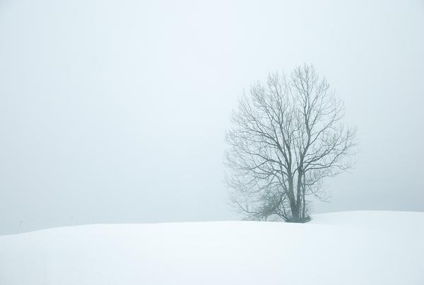 Nuclear Winter Landscape
