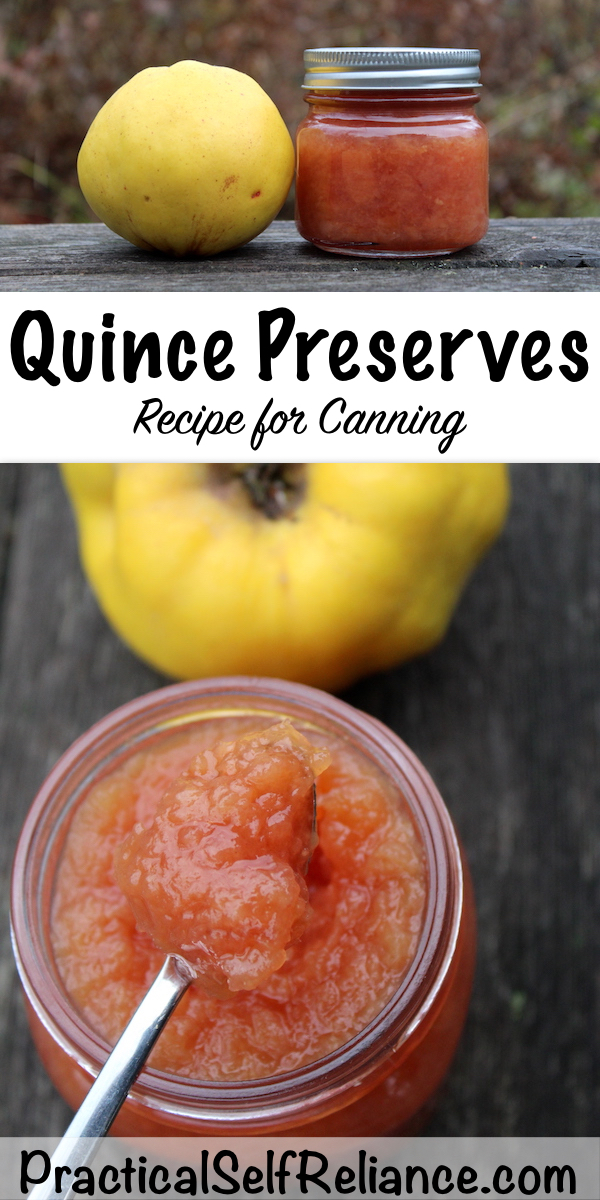 Quince Preserves Recipe for Canning #quince #recipes #preserves #foodpreservation #canning #preservesrecipe #homesteading