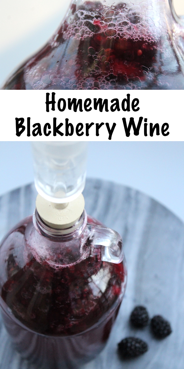 Homemade Blackberry Wine Recipe #blackberry #recipe #homemade #wine #winemaking #homebrew #fermenting #drinks #beverage