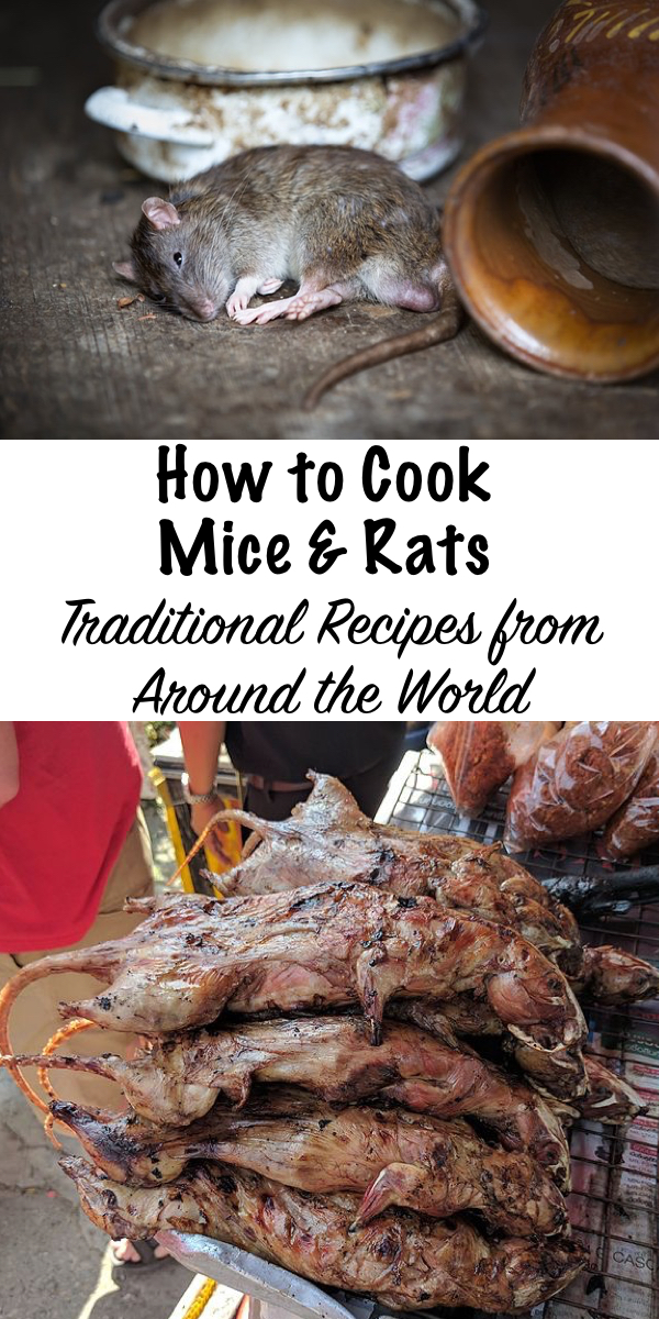 How to Cook Mice & Rats ~ Traditional Recipes From Around the World #mice #rats #recipes #traditionalfoods #preparedness #prepper #survivalist #selfreliant #shtf