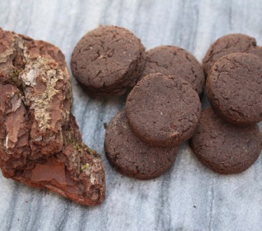 Pine Bark Cookies (with a Side of Hope)