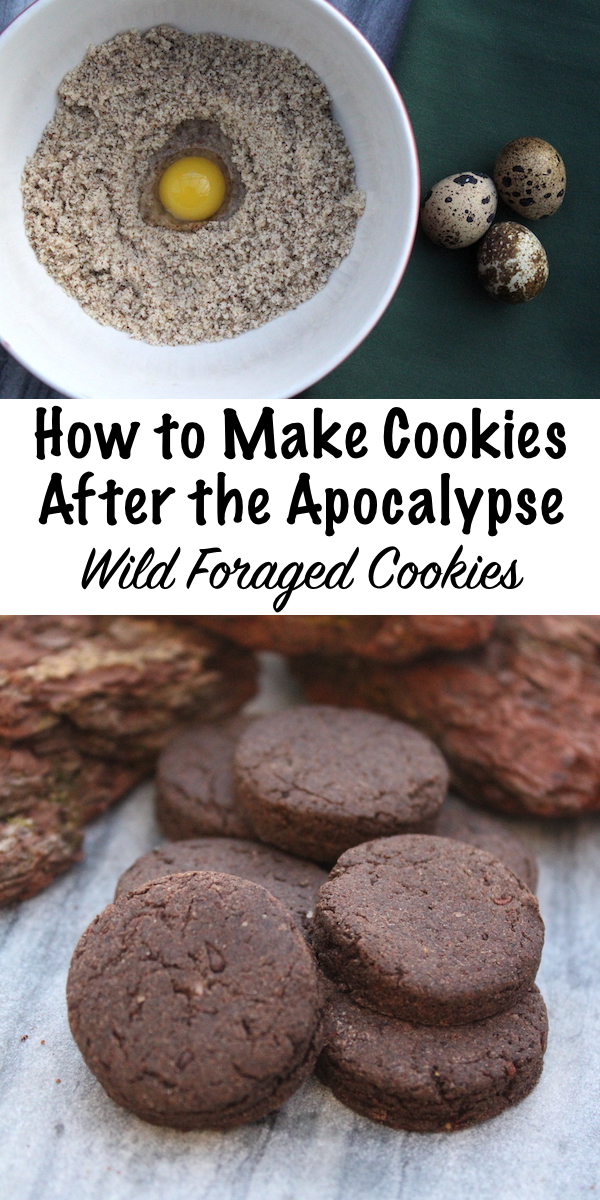 How to Make Cookies After the Apocalypse ~ Wild Foraged Cookie Recipes #foraged #cookie #recipe #survival #selfsufficiency #prepper #shtf