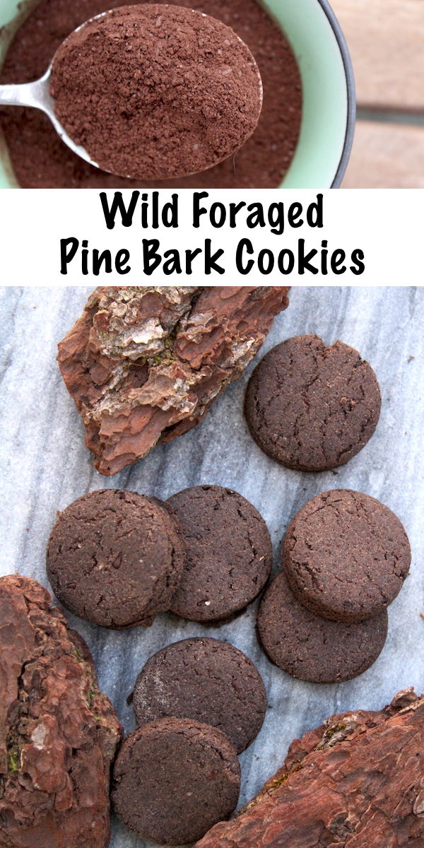 Wild Foraged Pine Bark Cookies (with a Side of Hope...) #cookies #recipe #pine #bark #foraged #foraging #edible