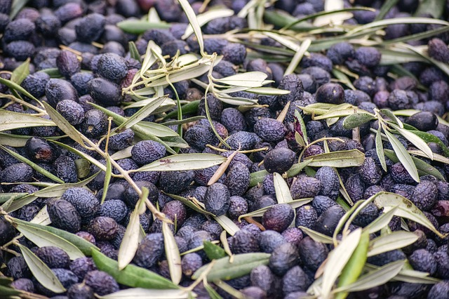 Wood ashes are an alkali cure for olives
