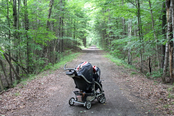 Double Stroller Foraging with kids