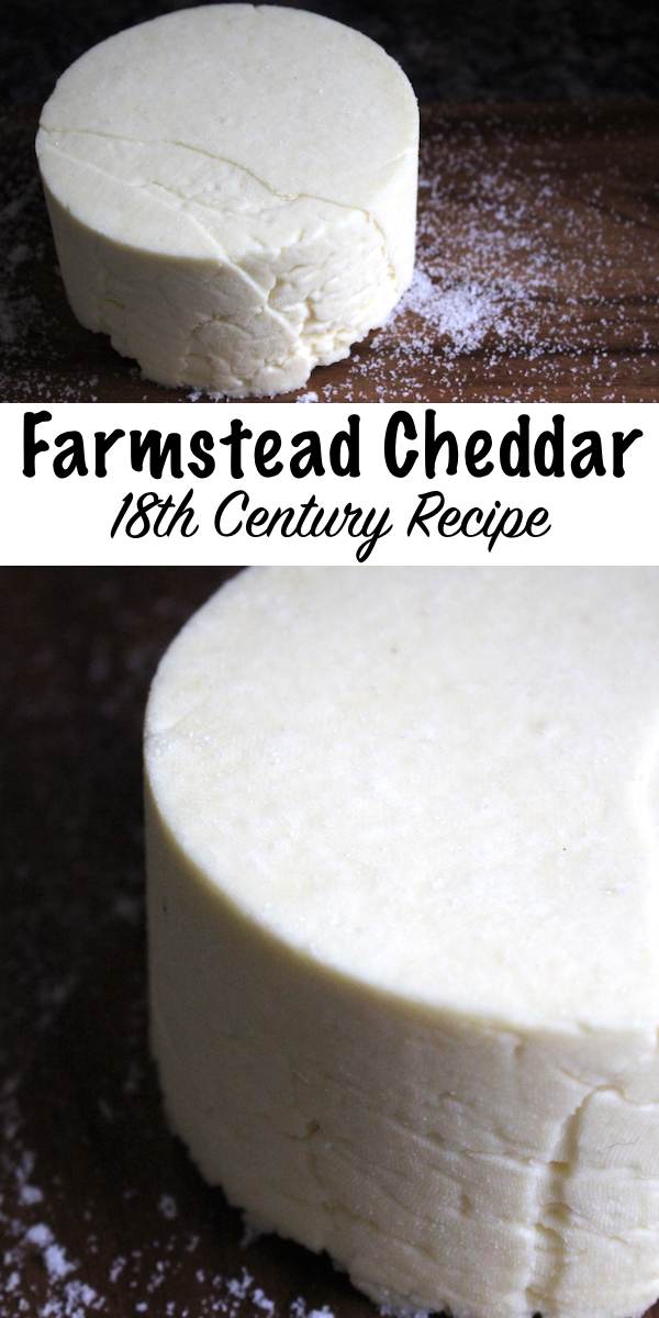 Homemade Farmstead Cheddar from an 18th Century Recipe ~ This historical cheesemaking recipe is simple to make at home with minimal equipment. #cheese #recipe #cheesemaking #cheddar #athome #diy #dairy #homesteading