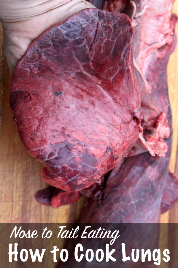How to Cook Lungs for Nose to Tail Eating ~ How to prepare offal cuts for the best flavor, even animal lungs. #offal #recipe #nosetotail #wholebeast #lungs #selfsufficiency #homesteading