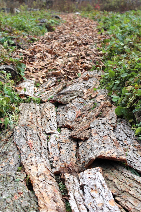 Laying Bark Sheet Mulch
