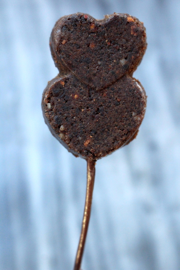 Pemmican Lollipops ~ Wild Foraged Bushcraft Treats