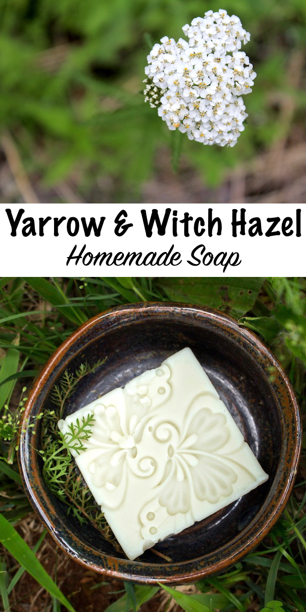 Homemade Yarrow and Witch Hazel Soap ~ A wild foraged all natural soap recipe for fascial soap designed for oily or acne prone skin. #soap #recipe #foraged #wildcrafted #yarrow #uses #handmade #coldprocess #acne #natural #skincare