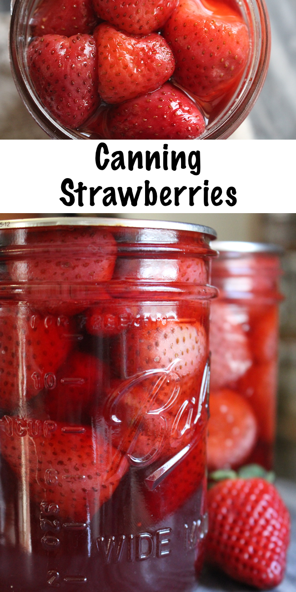 Canning Strawberries ~ How to Can Strawberries at Home ~ Whole Strawberries or Slices ~ Easy water bath canner recipe. #canning #strawberries #foodpreservation #homesteading #selfsufficiency #howto