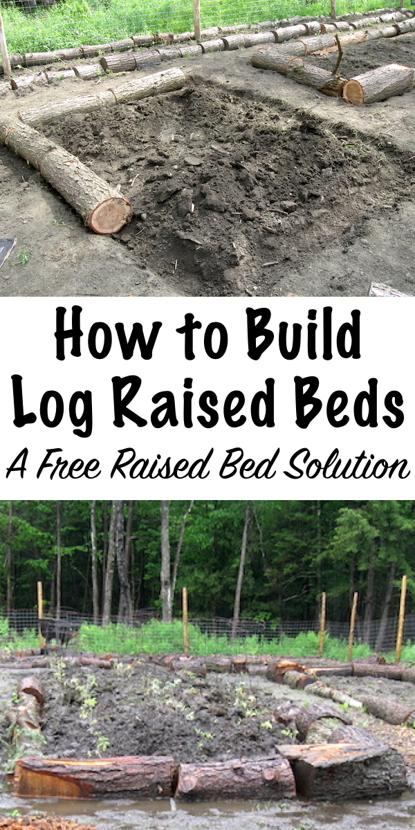 Log Raised Beds are an inexpensive raised bed solution with a lot of benefits for the soil ecology. #raisedbeds #gardening #organicgardening #foodgardening #howtogrow #vegetablegardening #gardeningtips #homesteading #homestead #selfreliant #raisedgarden