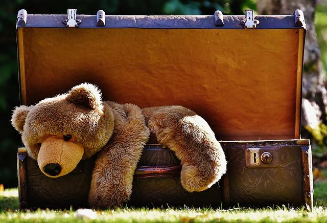 luggage with a teddy bear