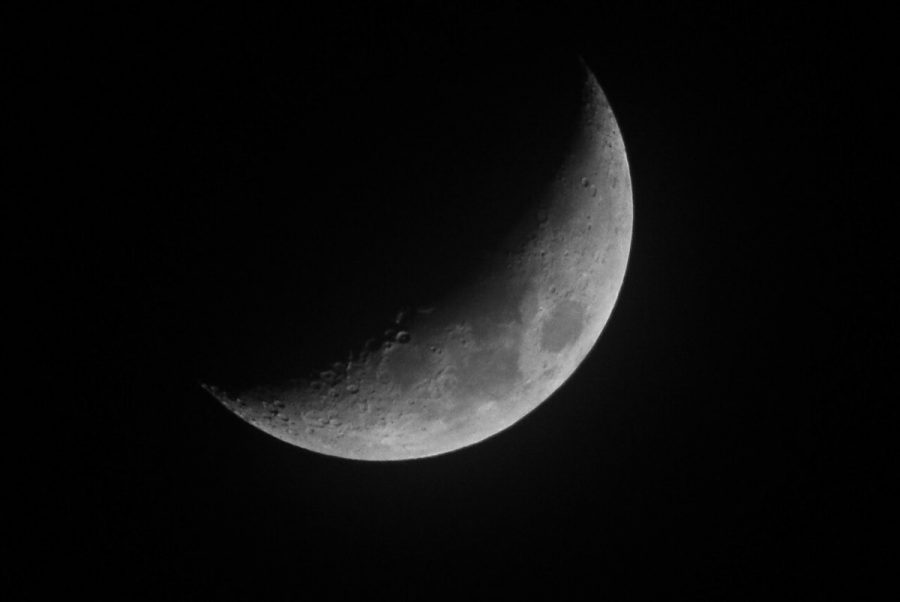 A waxing crescent moon in the dark sky.