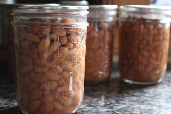 Home Canned Pinto Beans made with a safe pressure canner recipe for canning beans at home