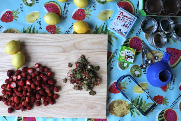 Prepping Strawberries for jam in an outdoor canning kitchen