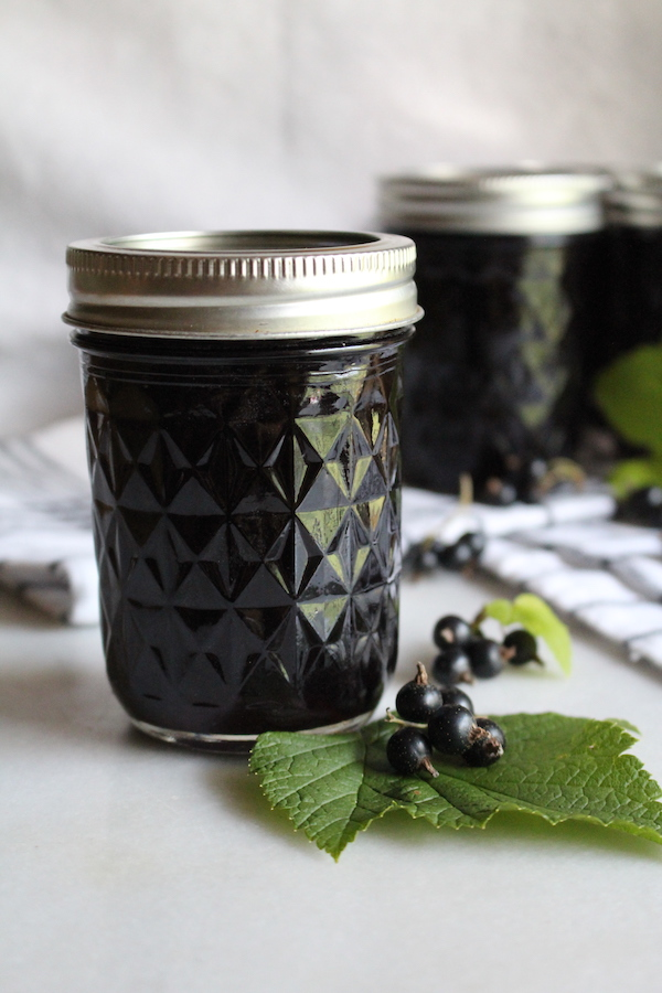 Homemade blackcurrant jelly
