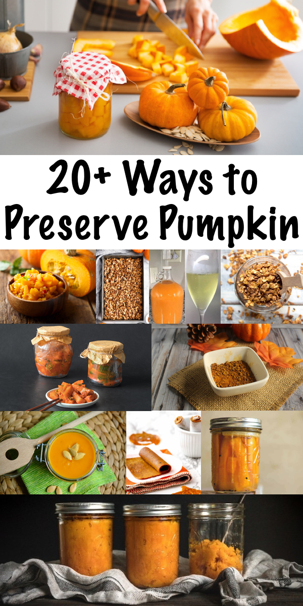 20 Ways to Preserve Pumpkin ~ Don't let your pumpkins spoil! There are so many ways to pumpkin preservation methods, both historical and modern. Whether you've harvested the pumpkin fresh from the garden, or you're looking for a way to use a jack-o-lantern after halloween, there are plenty of pumpkin preservation methods for any kitchen. #pumpkin #pumpkinrecipes #foodpreservation #autumn #fall