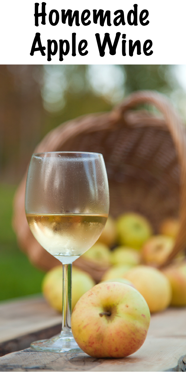 Homemade Apple Wine ~ Apple wine is easy to make at home with fresh pressed or store-bought juice. Just a small amount of equipment and you'll be well on your way to home winemaking! #fermenting #wine #apples #winemaking
