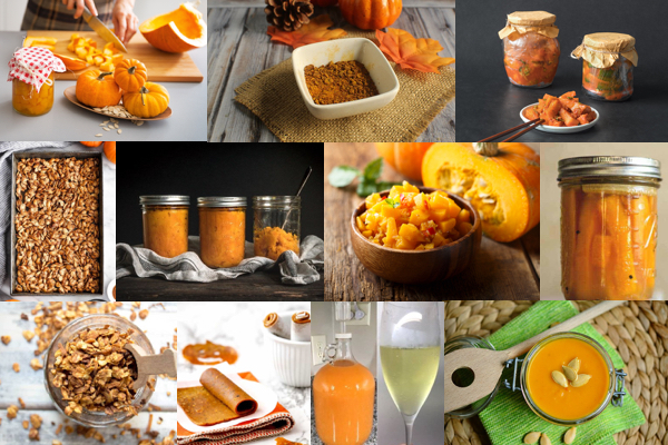 Collage of a number of different ways to preserve pumpkin