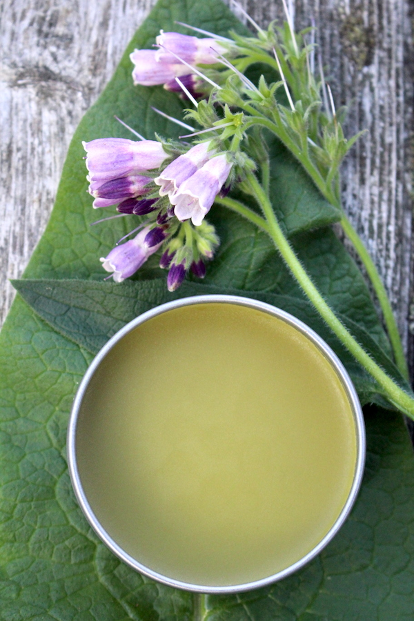 Comfrey salve has been shown to be an effective herbal pain reliever when applied topically.