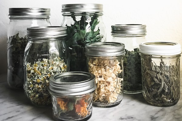 Herbs dried for storage