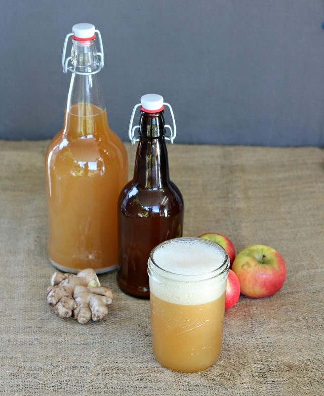 Fermented Apple Ginger Beer (Image Courtesy of Grow Forage Cook Ferment)