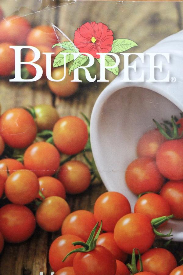 Burpee Seed Catalog