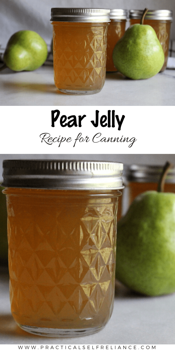 Pear Jelly Recipe for Canning ~ This easy pear jelly recipe preserves all the flavor of fall into a spreadable homemade jelly. Start with either pear juice or whole pears and make your own delicious pear preserves. #canning #jam #preserving