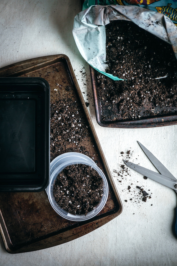Microgreen Growing Medium