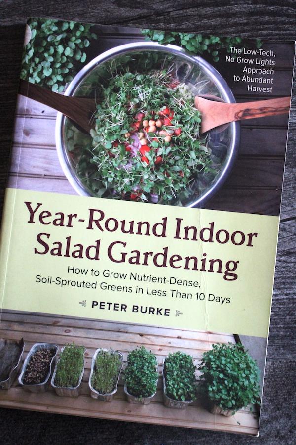 Year Round Indoor Salad Gardening Book