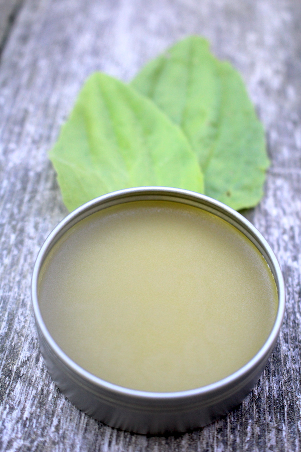 Homemade Plantain Herbal Salve