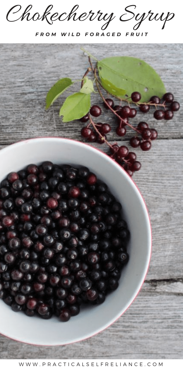 Chokecherry Syrup ~ Learn how to make a tasty syrup from wild foraged chokecherries.