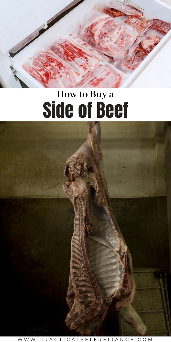 How to Buy a Side of Beef ~ Everything you need to know to fill your freezer with high quality local meat for less money.
