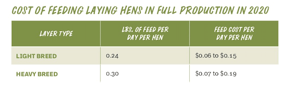 Cost of Feeding Laying Hens
