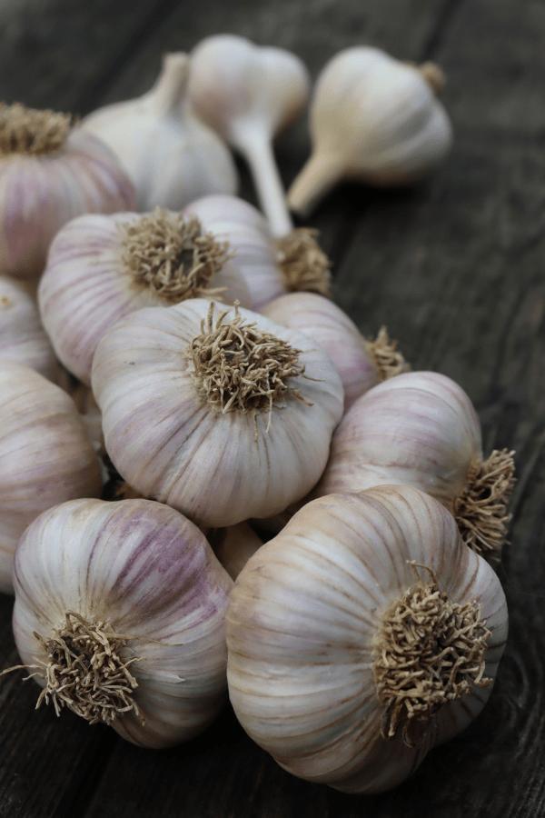 Cured Garlic Braid