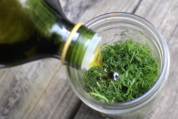 Making Yarrow Infused Oil