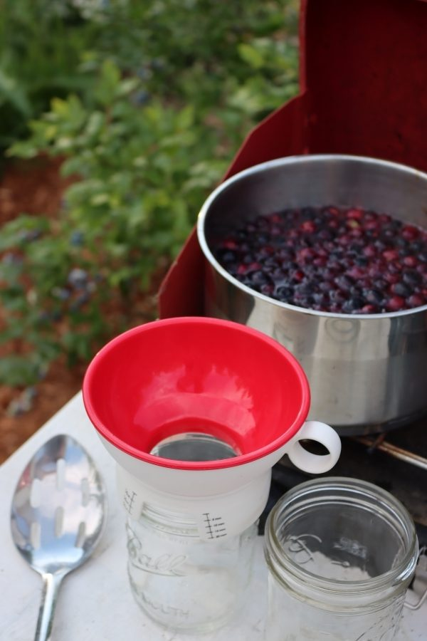 Hot Pack Canning Blueberries
