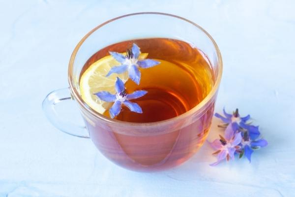 Borage Tea