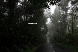 fotografi kabut jalan wisata banyumas