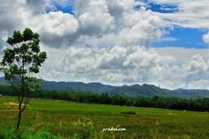 fotografi awan gemawan banyumas