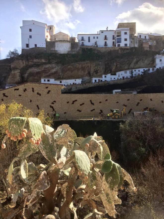 photos_and_videos/AndaluciaSpain2015_10153923367696869/1530513_10153929161291869_767540224613785250_n_10153929161291869.jpg