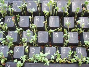 writers block keyboard